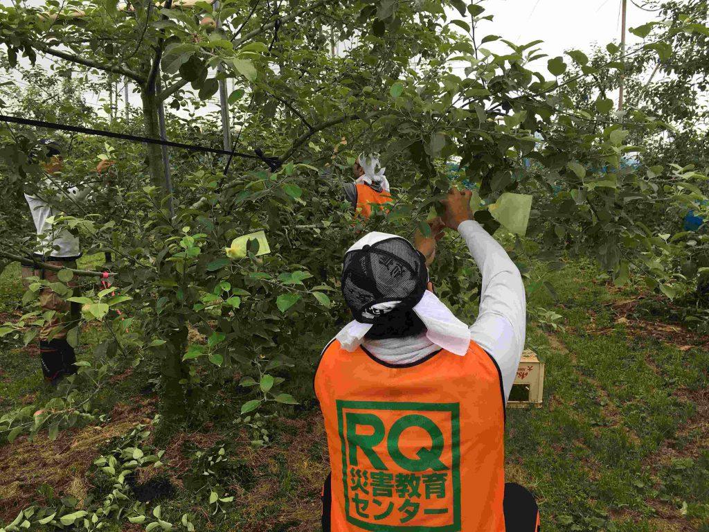 RQ九州ボランティア